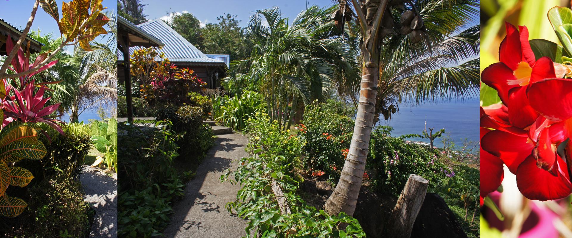Bungalows Et G 238 Tes En Guadeloupe Villa Rose Cara 239 Bes
